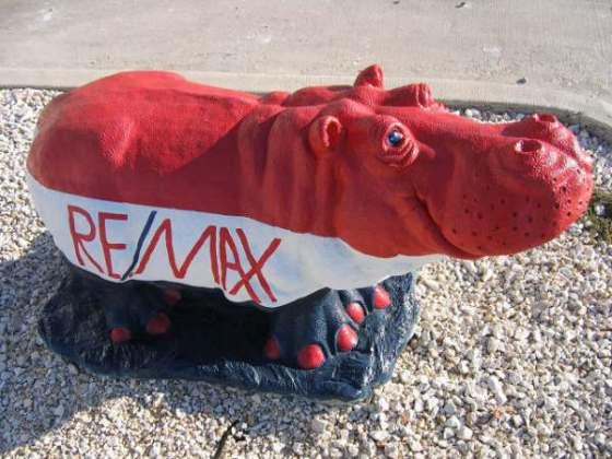 remax hippo